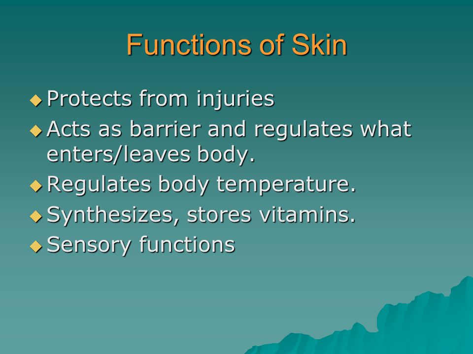 Functions of Skin Protects from injuries