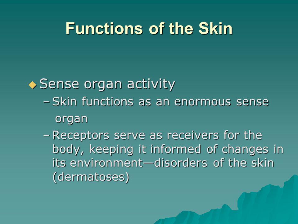 Functions of the Skin Sense organ activity
