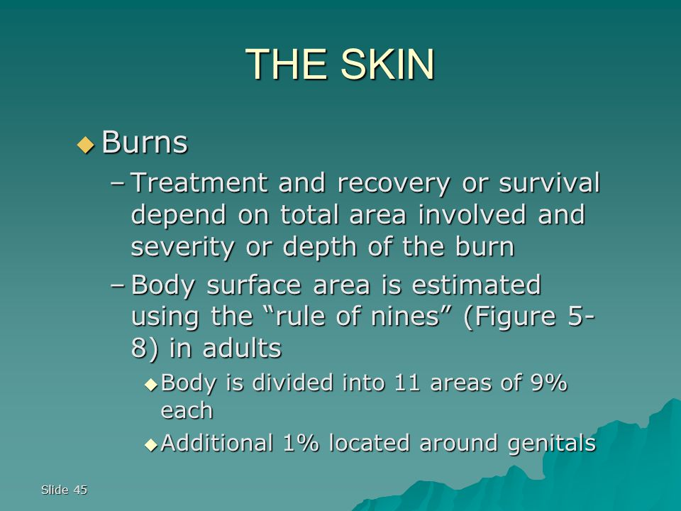 THE SKIN Burns. Treatment and recovery or survival depend on total area involved and severity or depth of the burn.