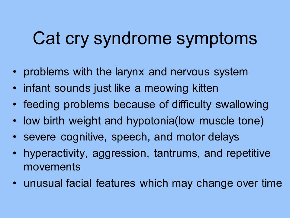 Cat cry syndrome symptoms