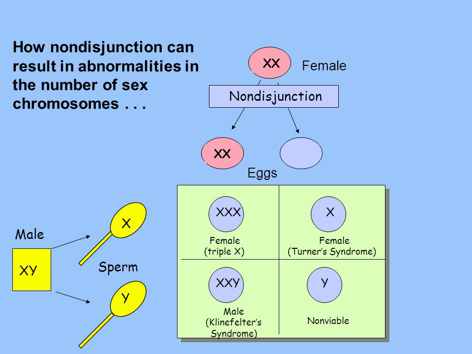 How nondisjunction can result in abnormalities in the number of sex chromosomes . . .