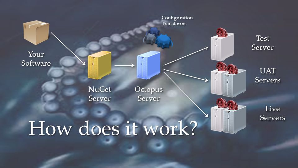 How does it work Your Software Test Server NuGet Server Octopus