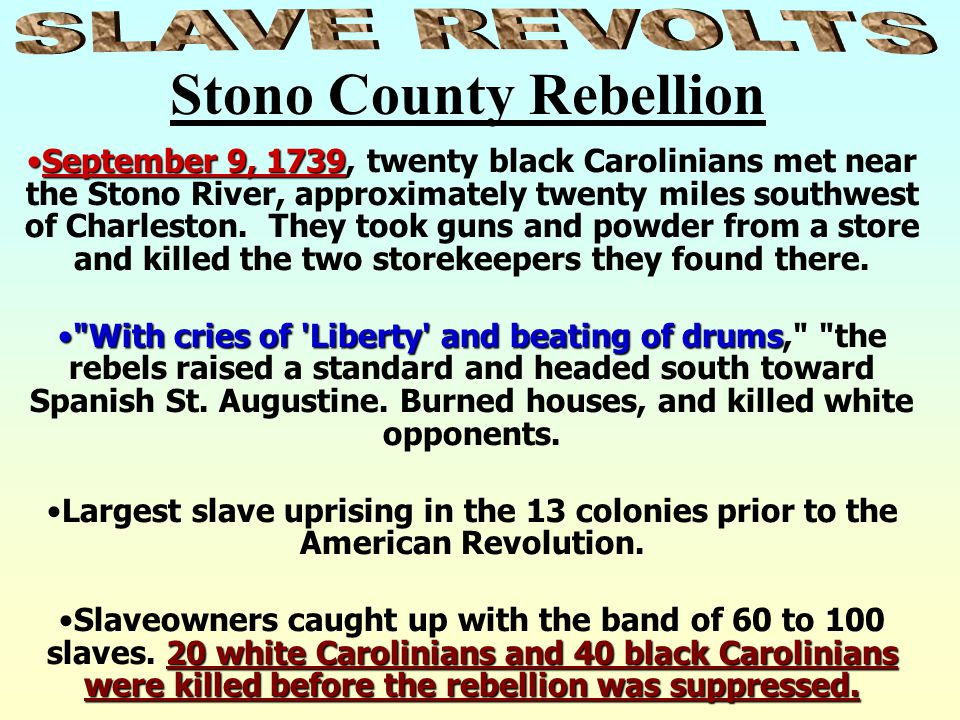 Stono County Rebellion