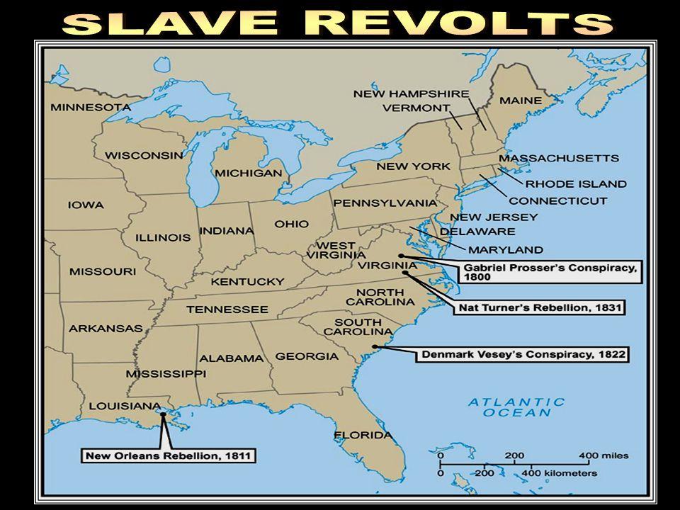 SLAVE REVOLTS Slave Revolts