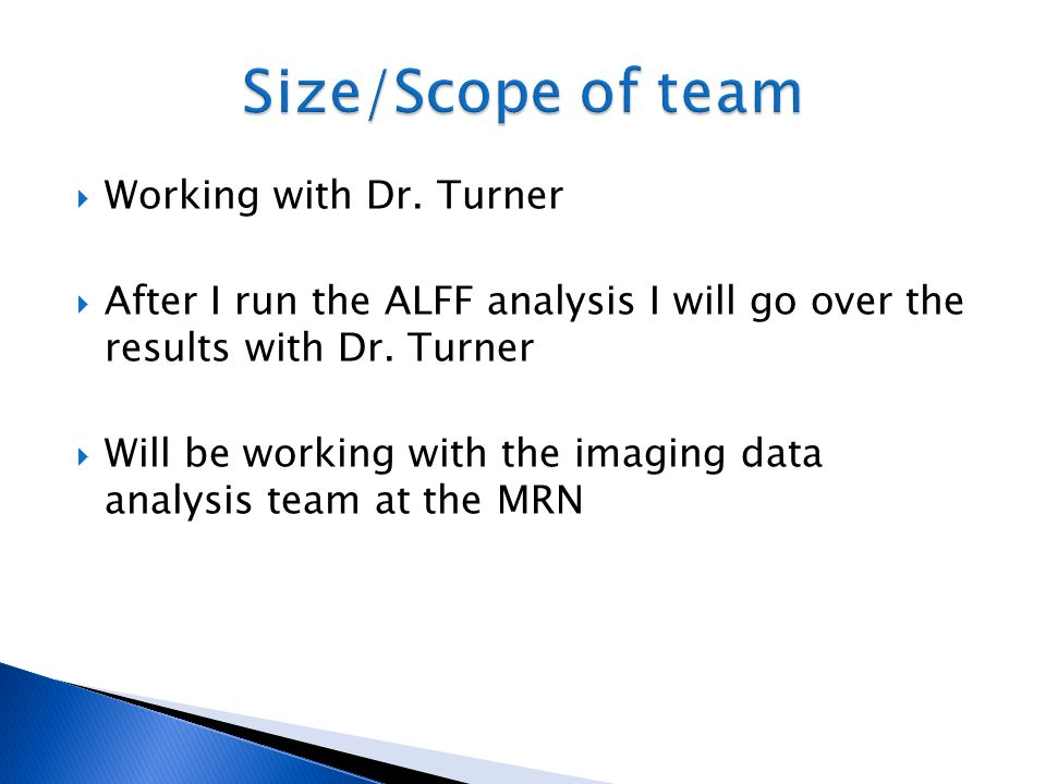 Size/Scope of team Working with Dr. Turner