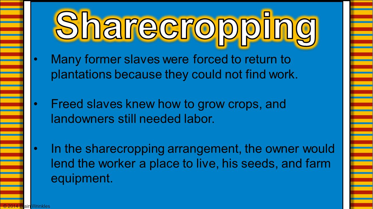 Sharecropping Many former slaves were forced to return to plantations because they could not find work.