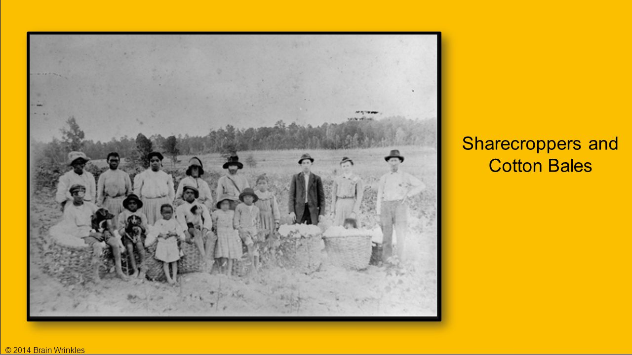 Sharecroppers and Cotton Bales