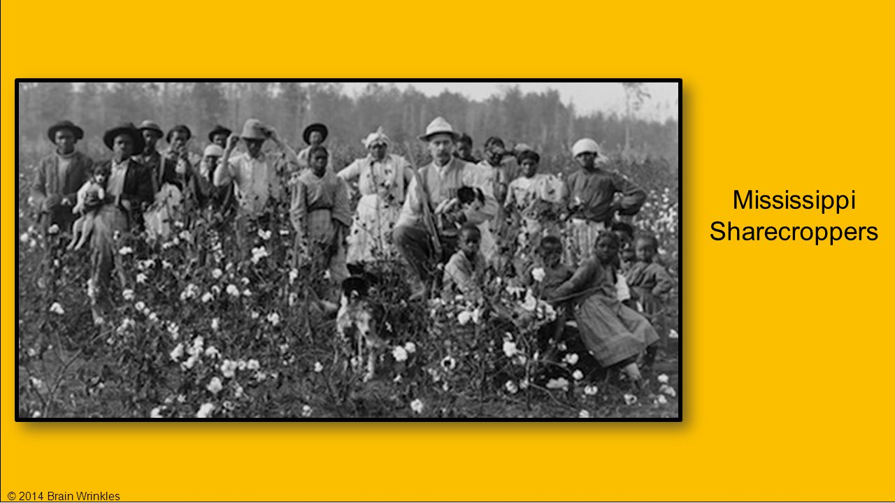 Mississippi Sharecroppers