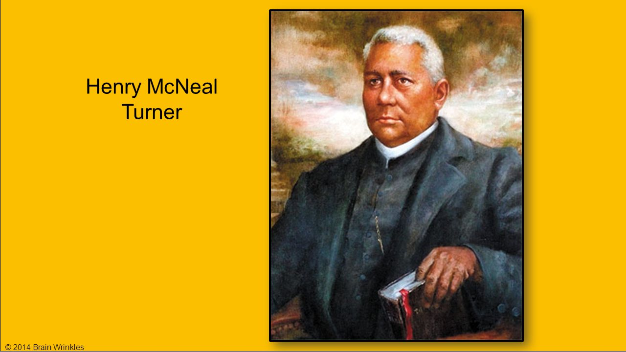 Henry McNeal Turner © 2014 Brain Wrinkles