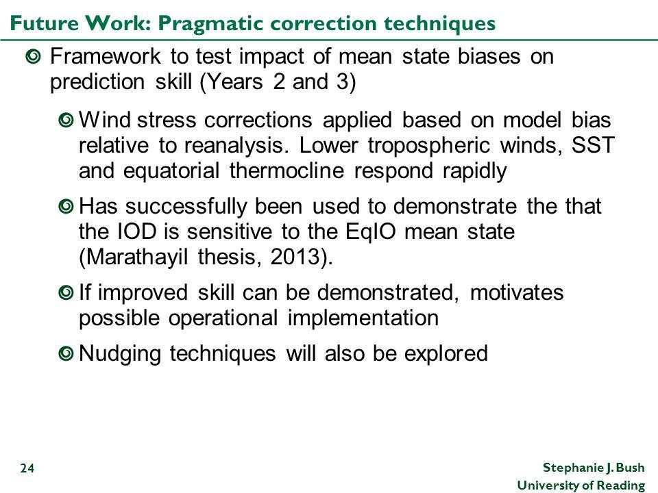 Future Work: Pragmatic correction techniques
