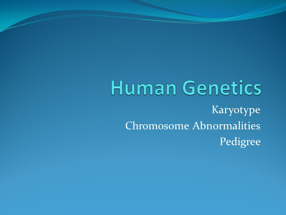 Karyotype Chromosome Abnormalities Pedigree