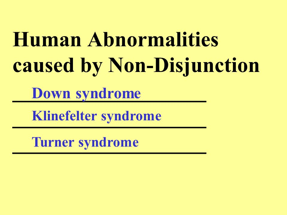 Human Abnormalities caused by Non-Disjunction __________________ __________________ __________________