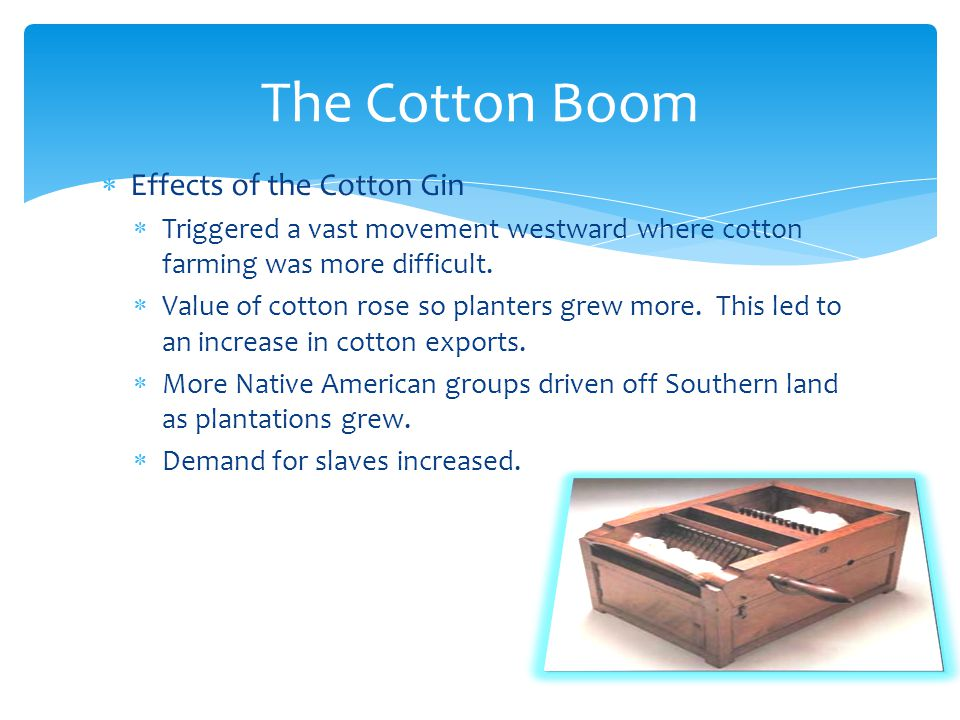 The Cotton Boom Effects of the Cotton Gin