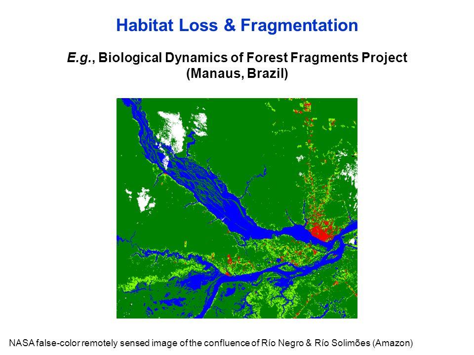 Habitat Loss & Fragmentation