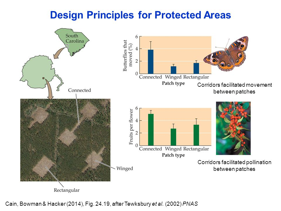 Design Principles for Protected Areas