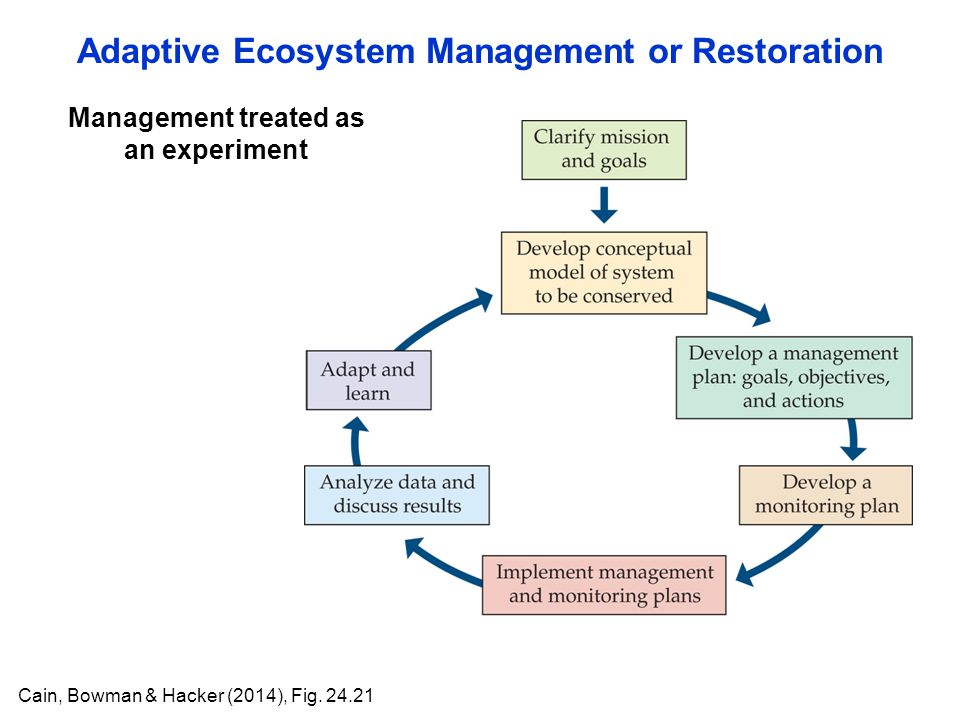 Adaptive Ecosystem Management or Restoration