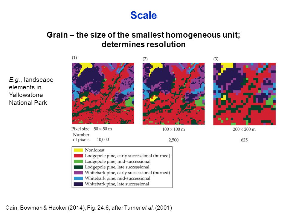 Scale Grain – the size of the smallest homogeneous unit;