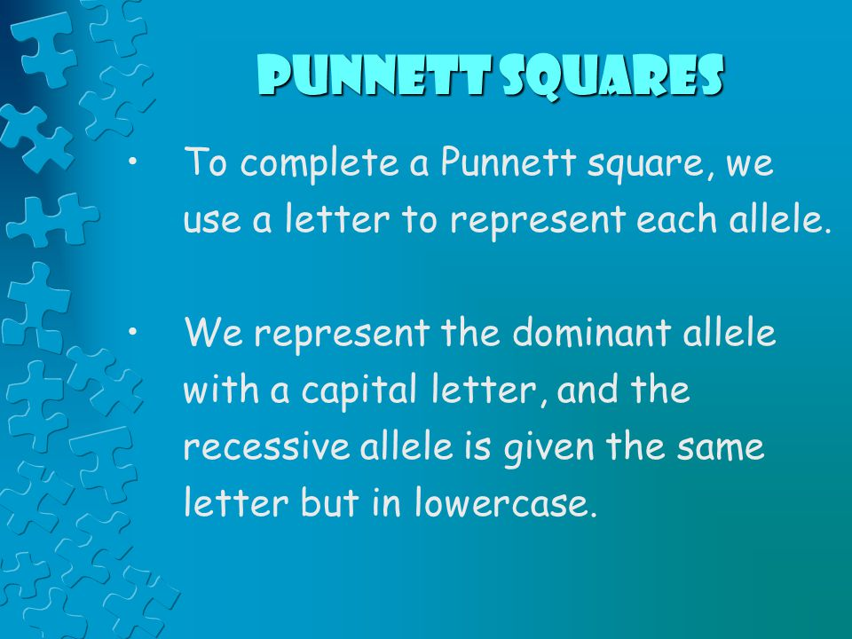 Punnett Squares To complete a Punnett square, we use a letter to represent each allele.