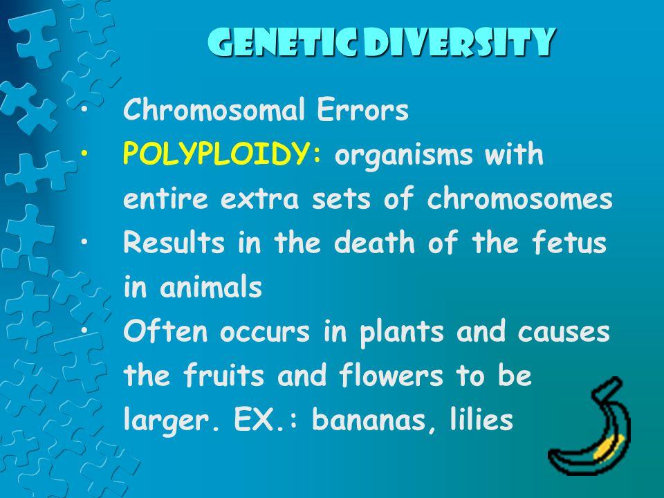 Genetic Diversity Chromosomal Errors