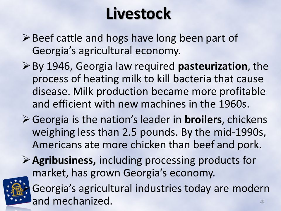 Livestock Beef cattle and hogs have long been part of Georgia's agricultural economy.