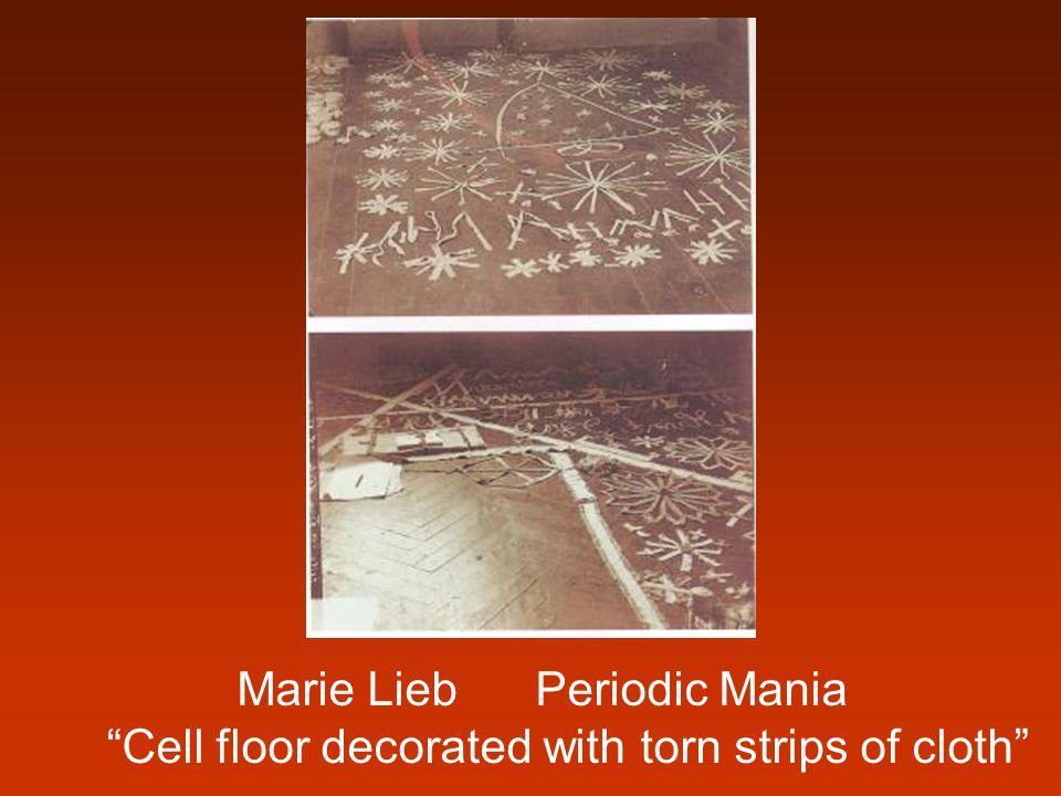 Marie Lieb Periodic Mania