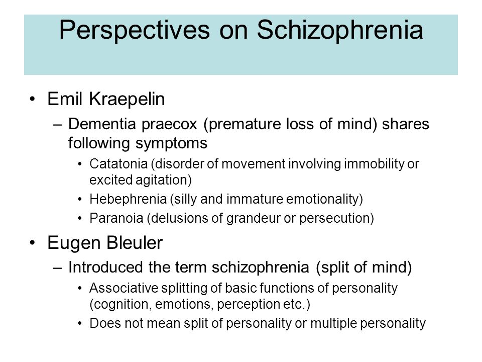 Perspectives on Schizophrenia