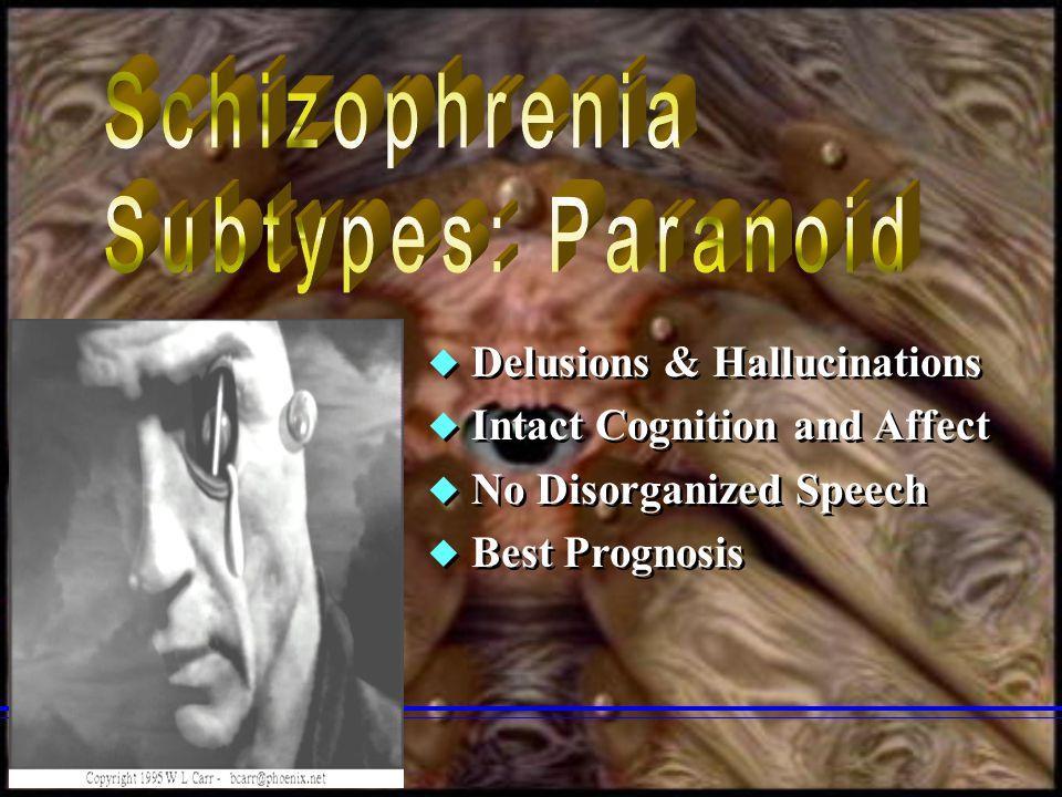 Schizophrenia Subtypes: Paranoid Delusions & Hallucinations