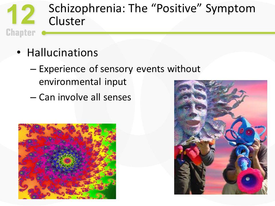 Schizophrenia: The Positive Symptom Cluster