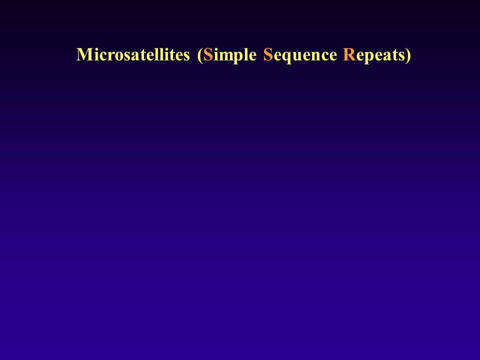 Microsatellites (Simple Sequence Repeats)