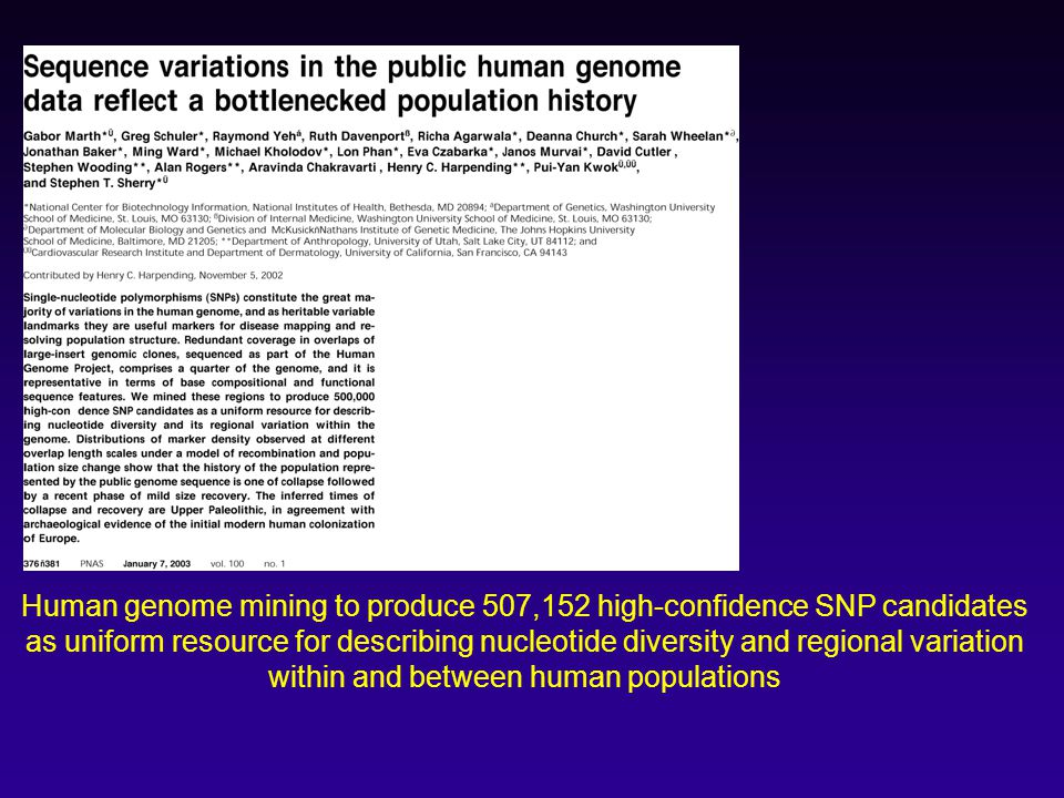 Human genome mining to produce 507,152 high-confidence SNP candidates