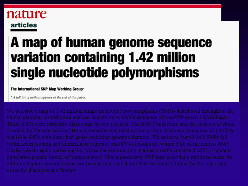 We describe a map of 1.42 million single nucleotide polymorphisms (SNPs) distributed throughout the human genome, providing an average density on available sequence of one SNP every 1.9 kilobases.