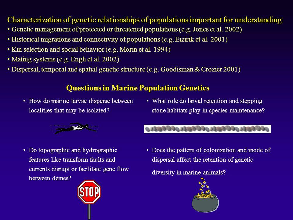 Questions in Marine Population Genetics