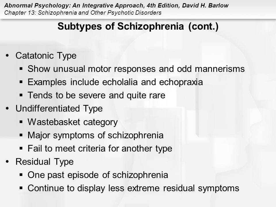 Subtypes of Schizophrenia (cont.)