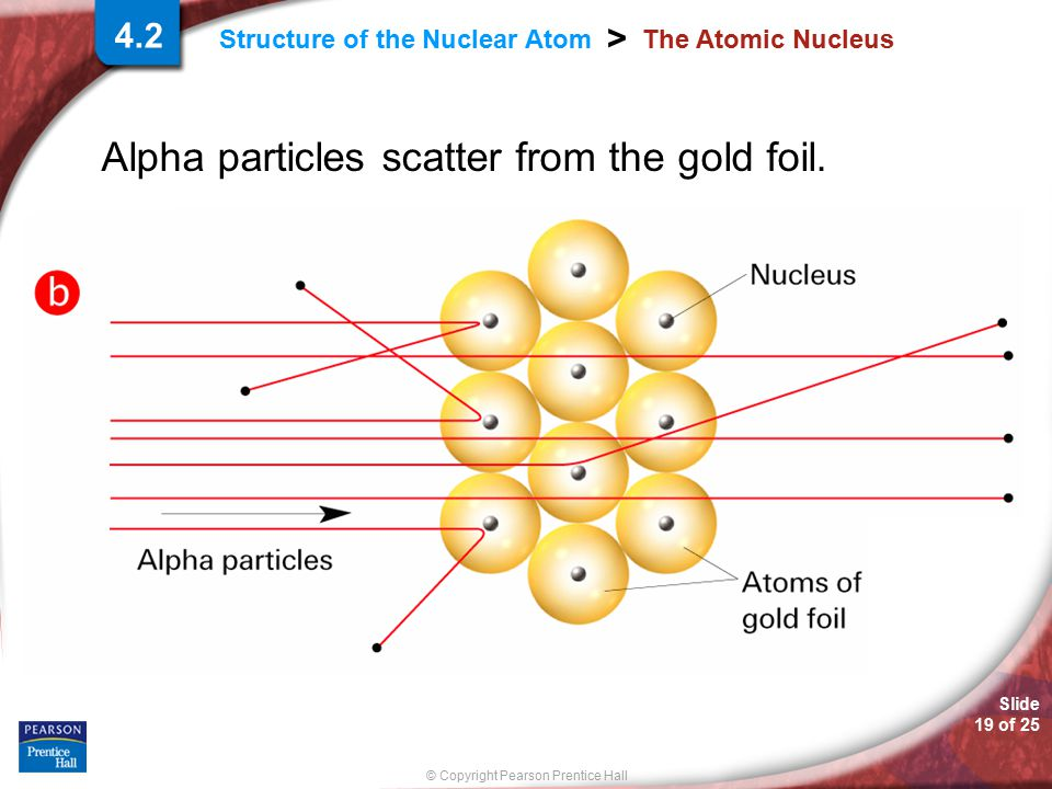 Alpha particles scatter from the gold foil.