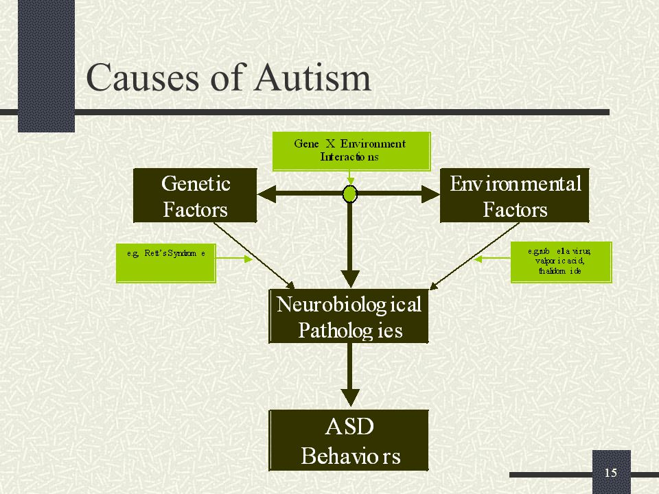 Causes of Autism My crude scheme for ASD etiology…
