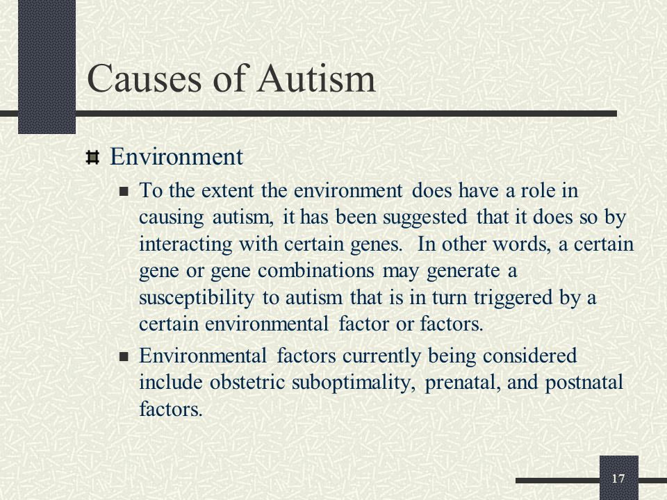 Causes of Autism Environment
