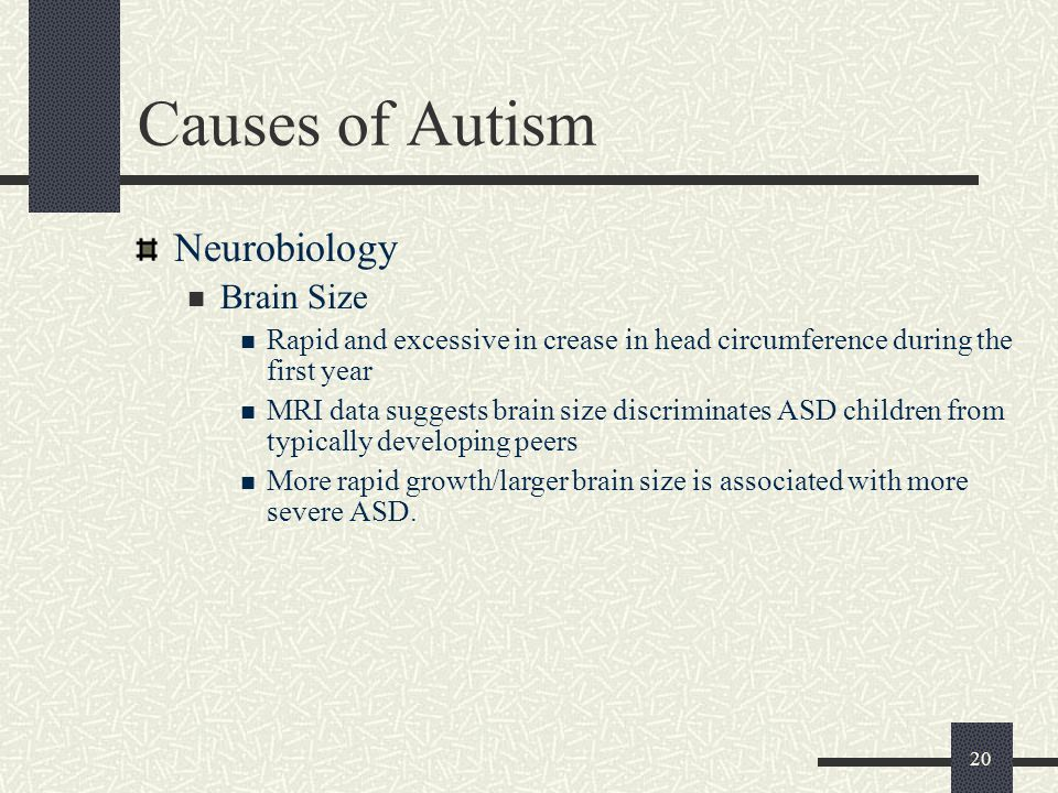 Causes of Autism Neurobiology Brain Size