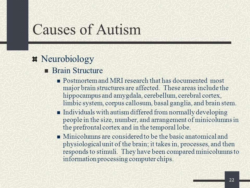 Causes of Autism Neurobiology Brain Structure