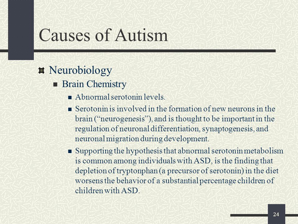 Causes of Autism Neurobiology Brain Chemistry