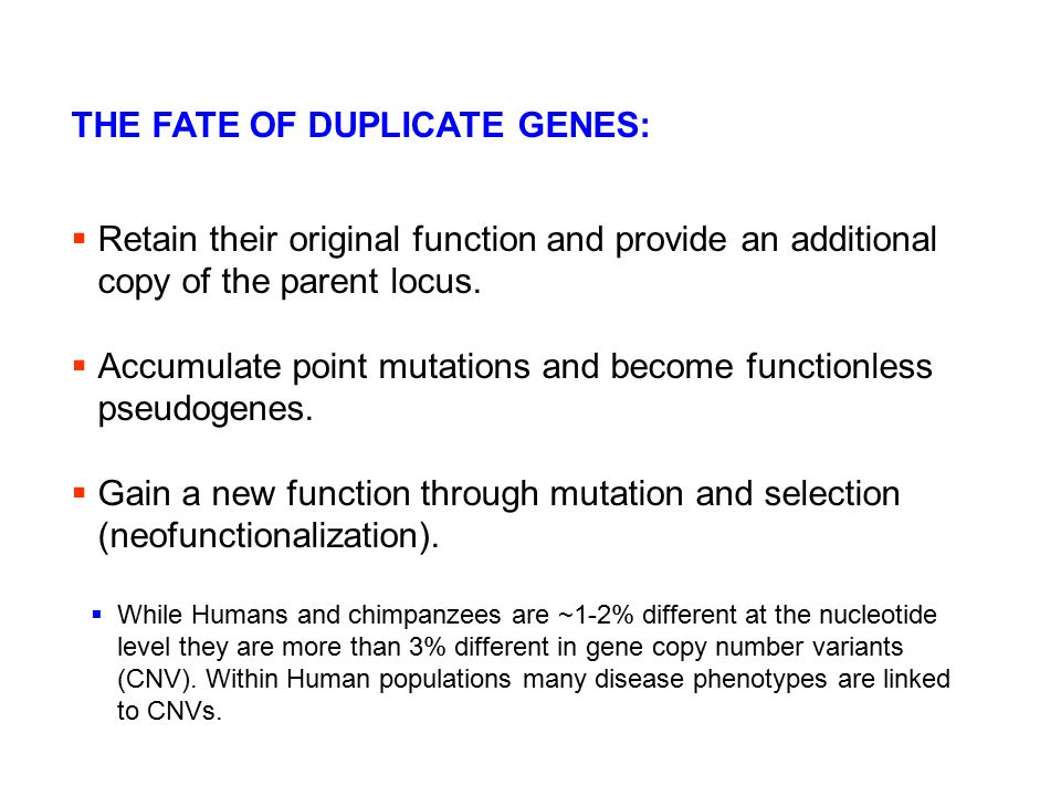 THE FATE OF DUPLICATE GENES: