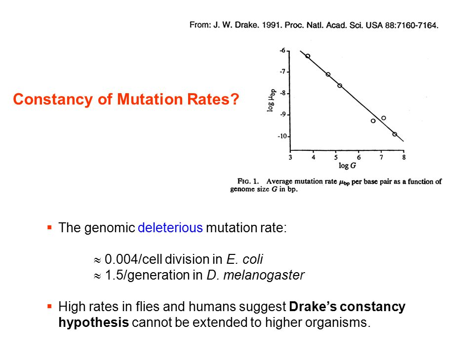 Constancy of Mutation Rates