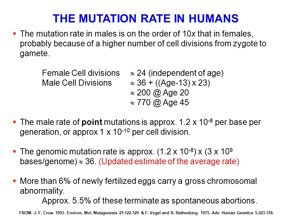 THE MUTATION RATE IN HUMANS