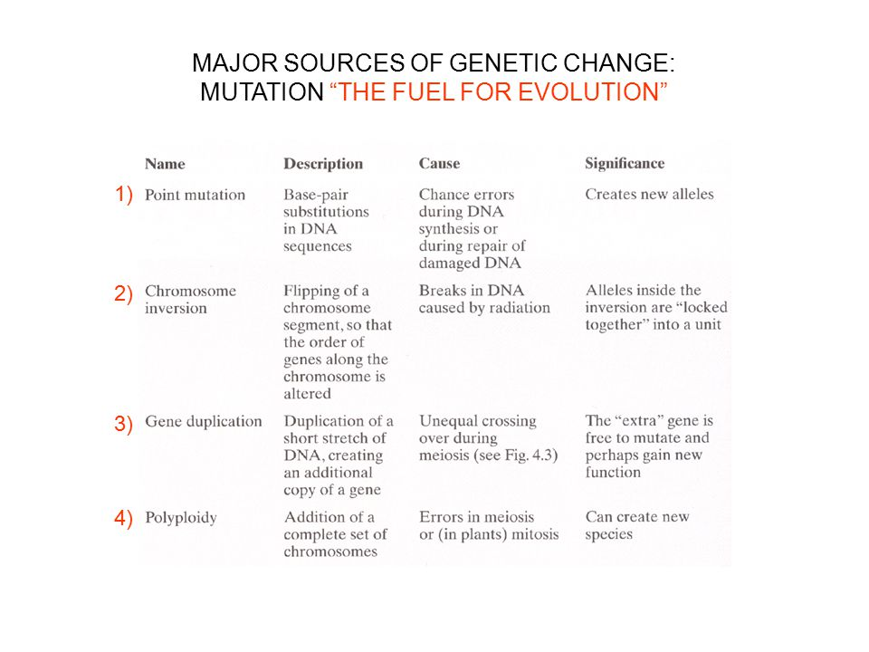 MAJOR SOURCES OF GENETIC CHANGE: MUTATION THE FUEL FOR EVOLUTION