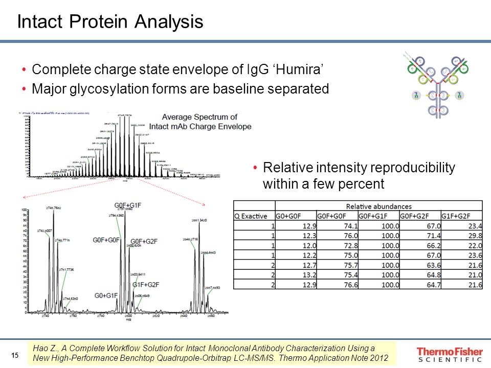 Intact Protein Analysis