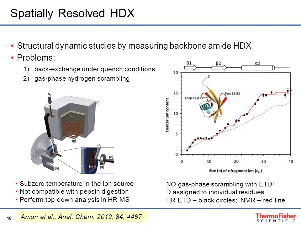 Spatially Resolved HDX