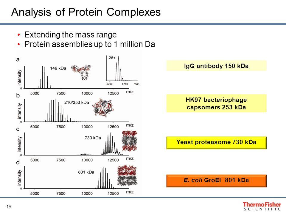 HK97 bacteriophage capsomers 253 kDa
