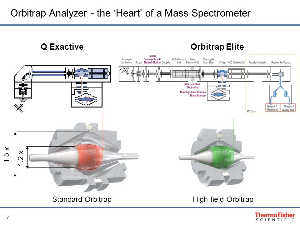 Orbitrap Analyzer - the 'Heart' of a Mass Spectrometer