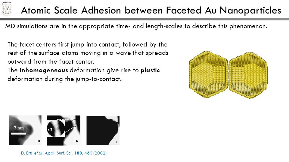 Atomic Scale Adhesion between Faceted Au Nanoparticles