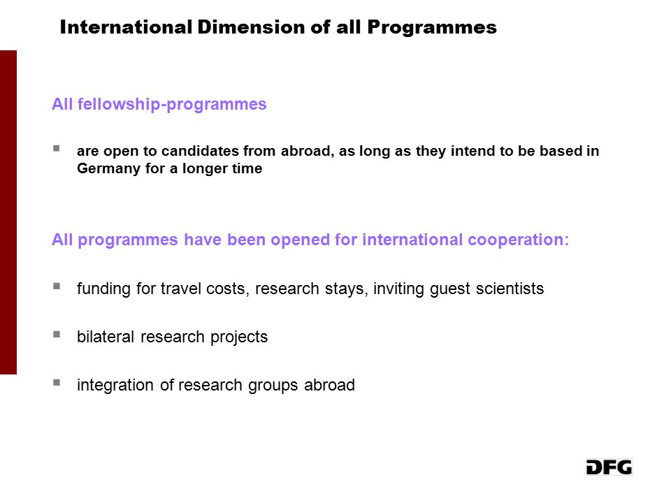 International Dimension of all Programmes