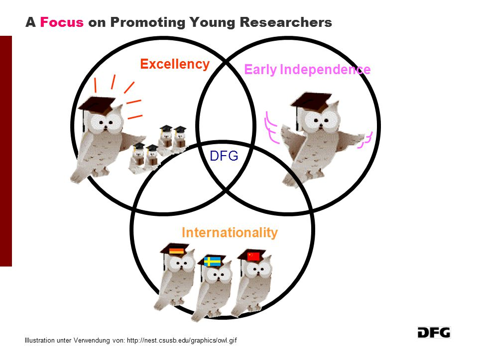 A Focus on Promoting Young Researchers